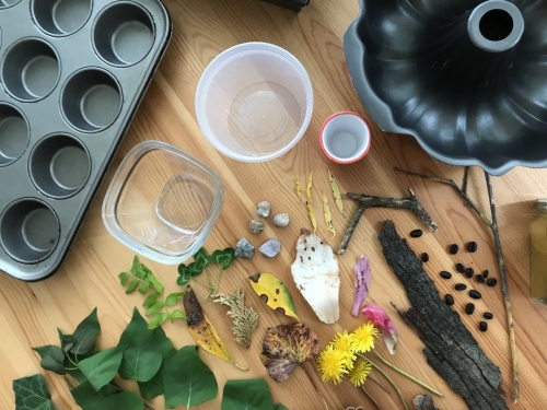 An assortment of containers, baking pan for muffins, found objects such as leaves, flowers, rocks, and other things from nature.