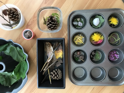 Found objects from nature such as pine cones, flowers, leaves, sticks placed in various containers.