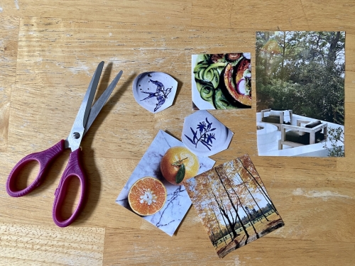 A pair of scissors with magazine cut-outs of photographs of oranges, an autumn park, a gourmet dish, an outdoor deck, and illustrations of a sparrow and leaves.