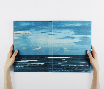 Anne Collier, Open Book #3 (Island Wilderness), from the Open Book series, 2010.