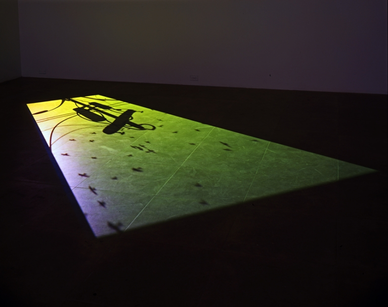 Paul Chan, 1st Light, 2005