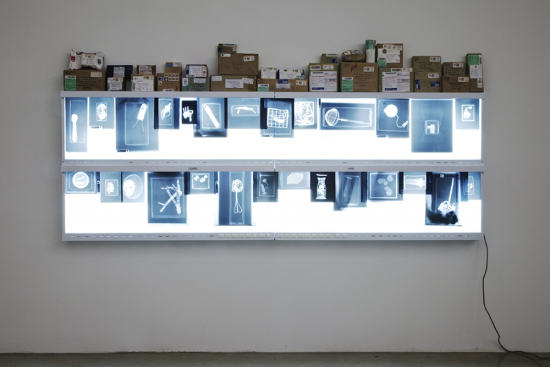 Mark Dion, The Package, 2006-11