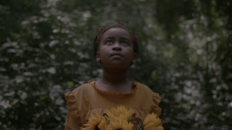 Still from The Ancestors Came