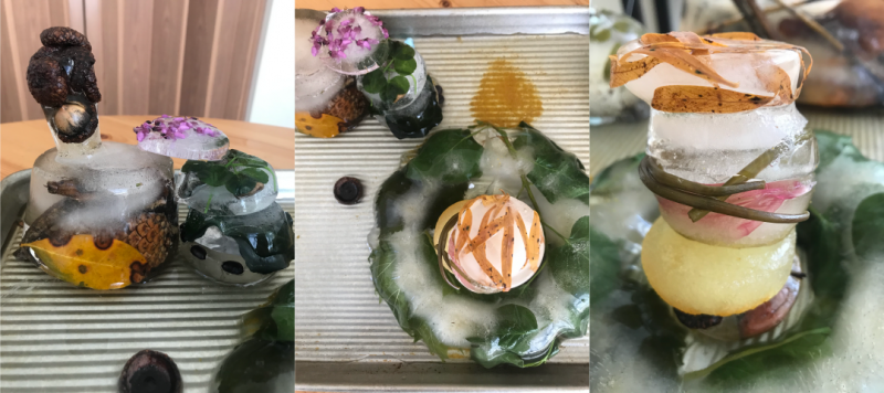 Three side-by-side images of various objects from nature, frozen in bowl-shaped ice, next to each other and stacked on top of one another.