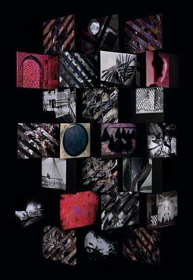 Sara VanDerBeek The Principle of Superimposition 2, 2008