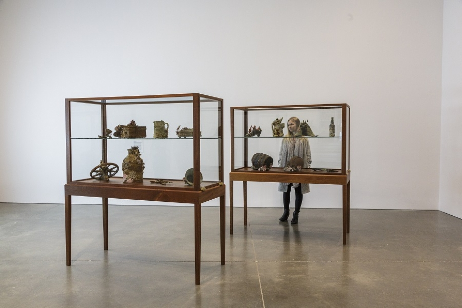 Mark Dion, Encrustations (with Dana Sherwood), 2012