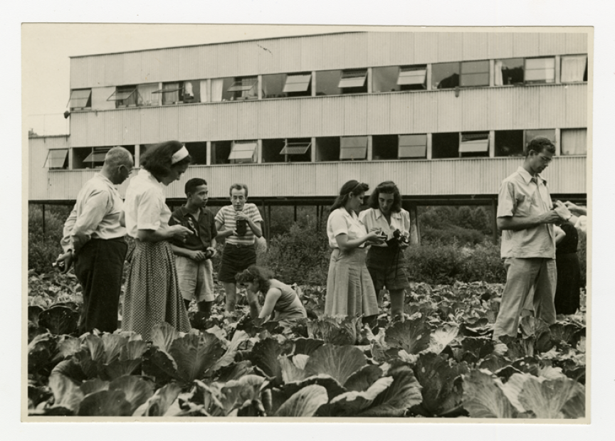 Photography class in cabbage patch, Photo by Barbara Morgan.