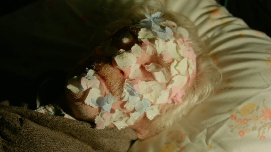 A film still of a person's face on a pillow covered in petals.