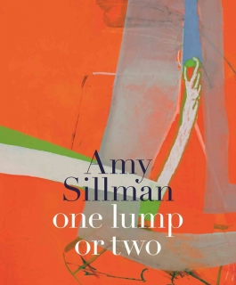 Cover of Amy Sillman catalogue with a detail of her painting.