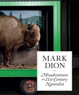 The cover of Mark Dion: Misadventures of a 21st-Century Naturalist with a stuffed buffalo on the cover.