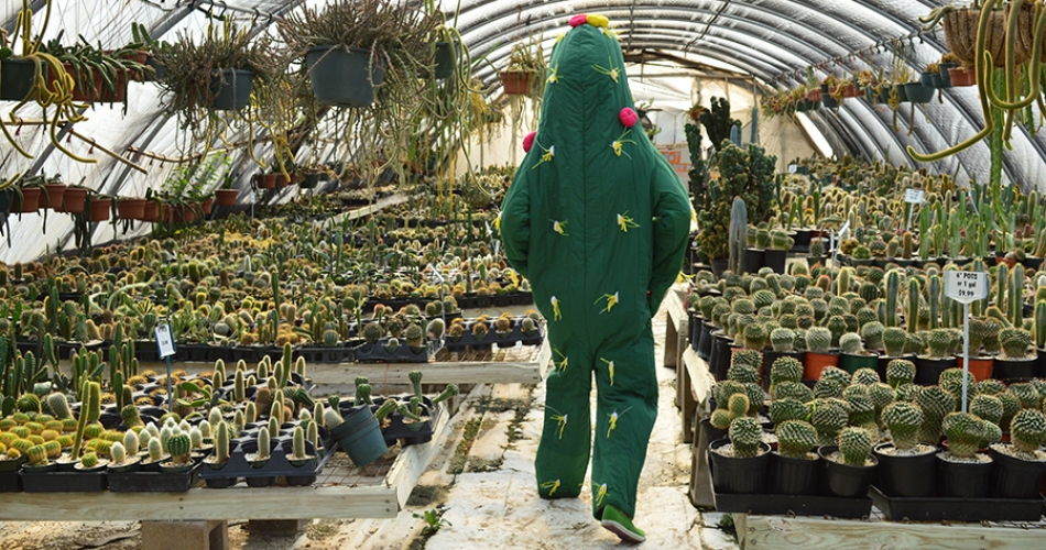 Artist Dance, dressed as a cactus, walks through a greenhouse.