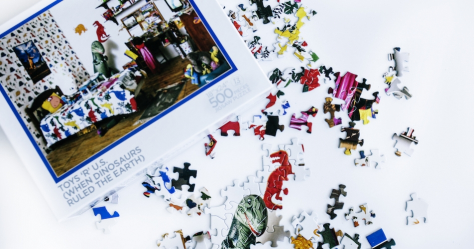 Mark Dion puzzle