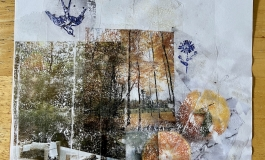 A collage comprising transfer images of a bird, trees, oranges, and more on clear tape over a white sheet of paper.