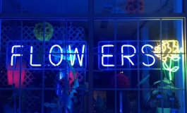 Neon flowers sign