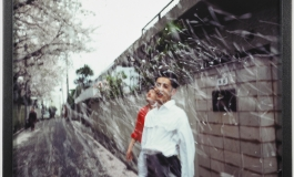 "Nan Goldin's ""Honda brothers in cherry blossom storm, Tokyo"""