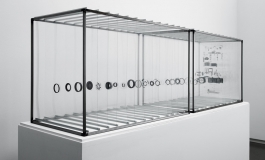 An installation comprised of two display cases containing the suspended components of a dissected 35mm Olympus camera.
