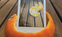 A polaroid photograph of orange peels inside the same orange peel on a wooden deck.
