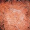 Mona Hatoum, Van Gogh's Back, 1995